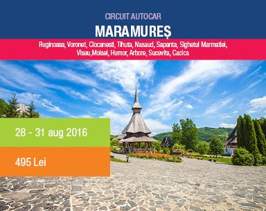 MRN_Bannere_web14_maramures