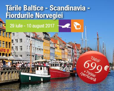 mrn_banner_scandinavia